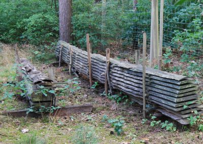 ein Baumstamm wird Bauholz